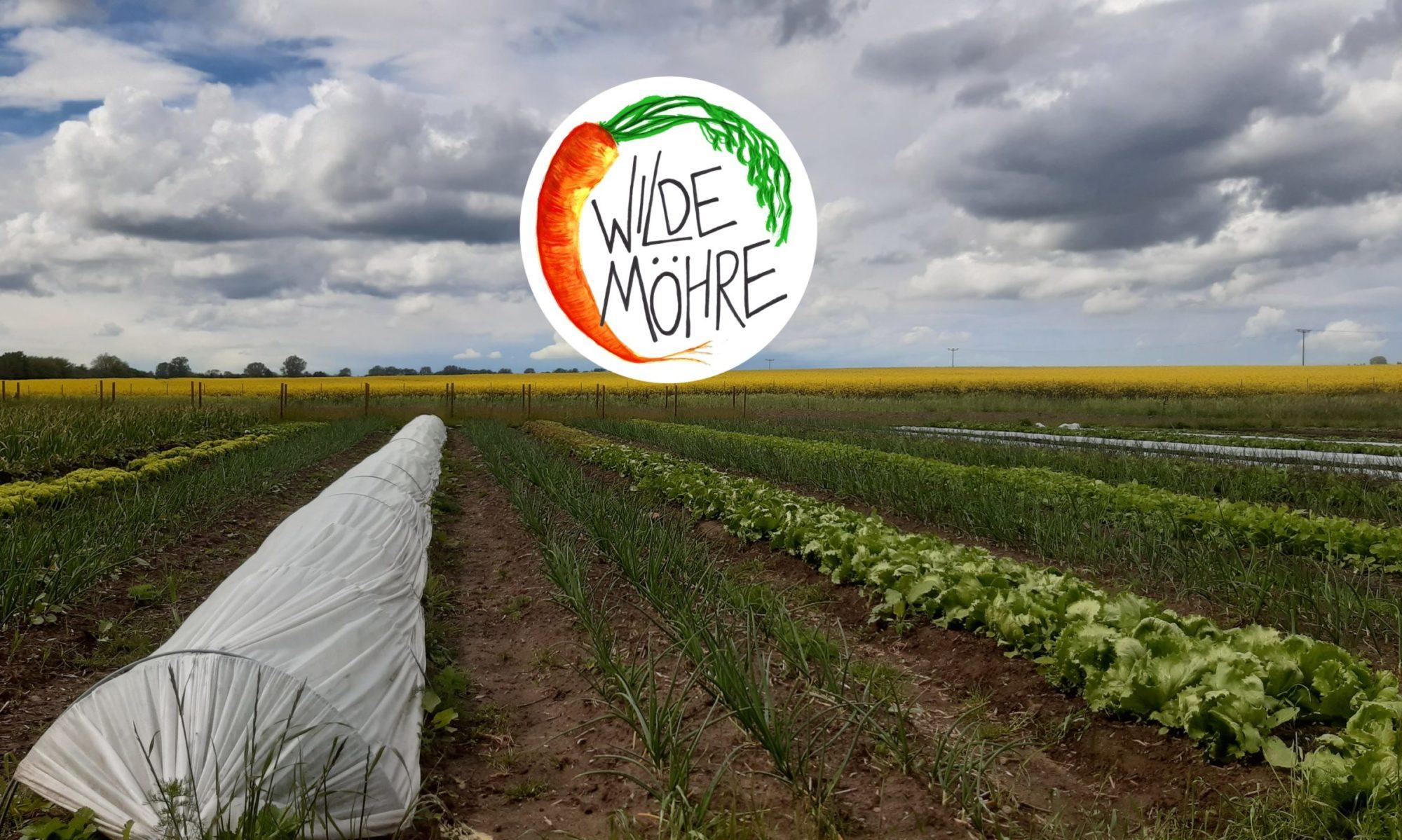 Solidarische Landwirtschaft WildeMöhre